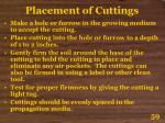 placement of cuttings