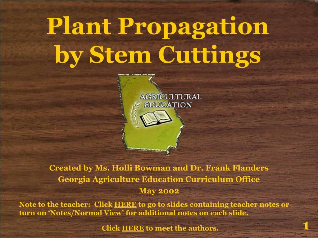 plant propagation by stem cuttings l.