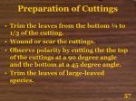 preparation of cuttings57