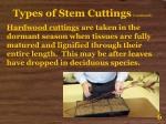 types of stem cuttings continued6