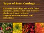 types of stem cuttings continued7