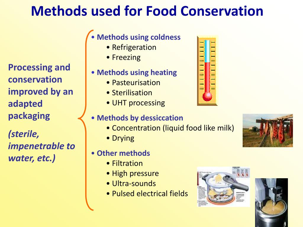 Methods used for Food Conservation