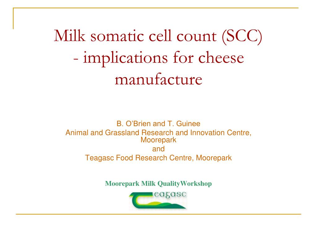 milk somatic cell count scc implications for cheese manufacture l.