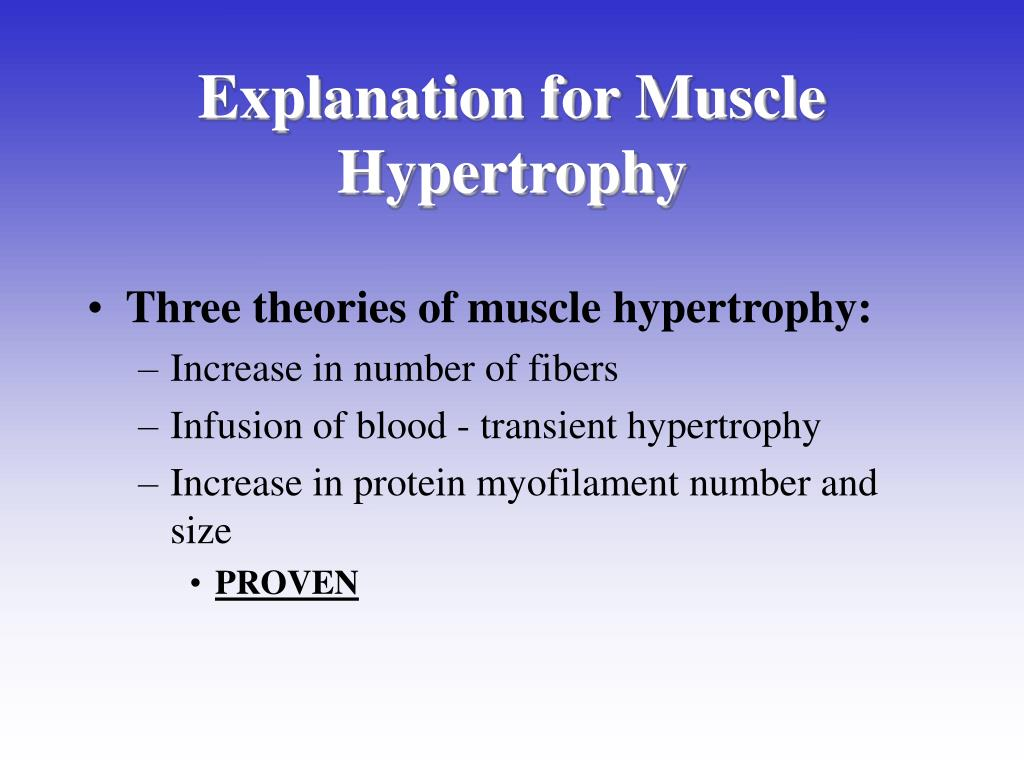 Explanation for Muscle Hypertrophy