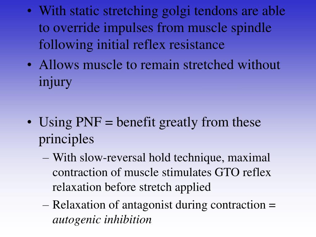 With static stretching golgi tendons are able to override impulses from muscle spindle following initial reflex resistance