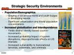 strategic security environments