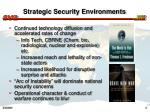 strategic security environments6