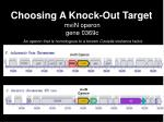 choosing a knock out target