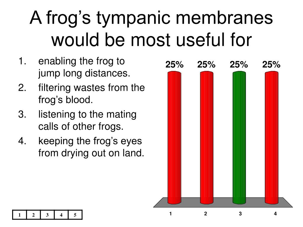 A frog's tympanic membranes would be most useful for