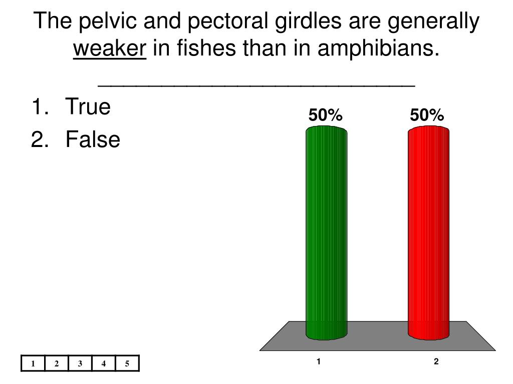 The pelvic and pectoral girdles are generally