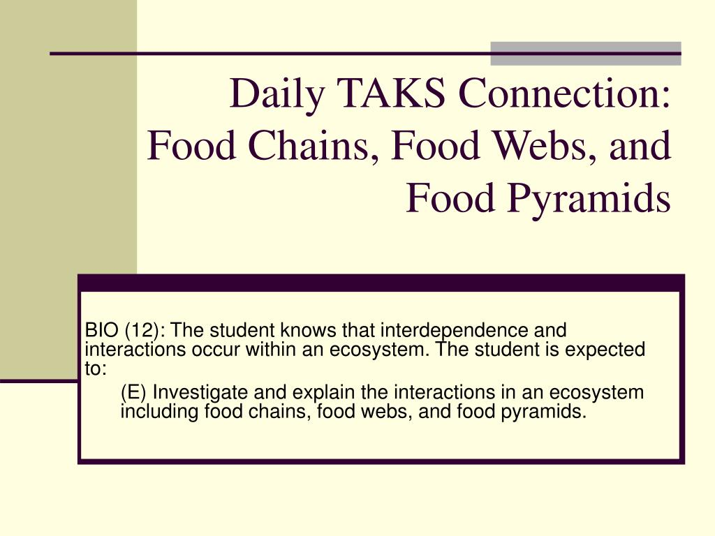 daily taks connection food chains food webs and food pyramids l.