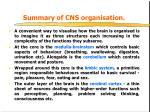 summary of cns organisation