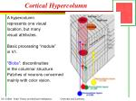 cortical hypercolumn