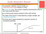 leaky integrator neuron