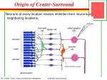 origin of center surround