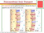 transmenbrane ionic transport