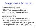 energy yield of respiration