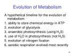 evolution of metabolism