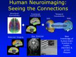 human neuroimaging seeing the connections