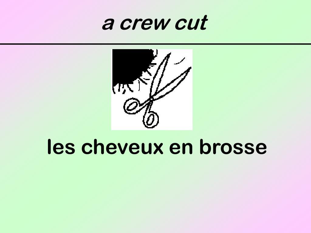 a crew cut