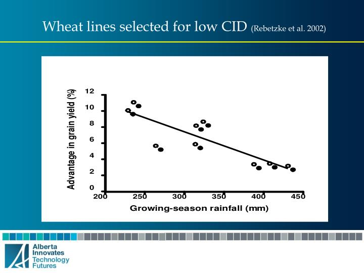 Wheat lines selected for low CID