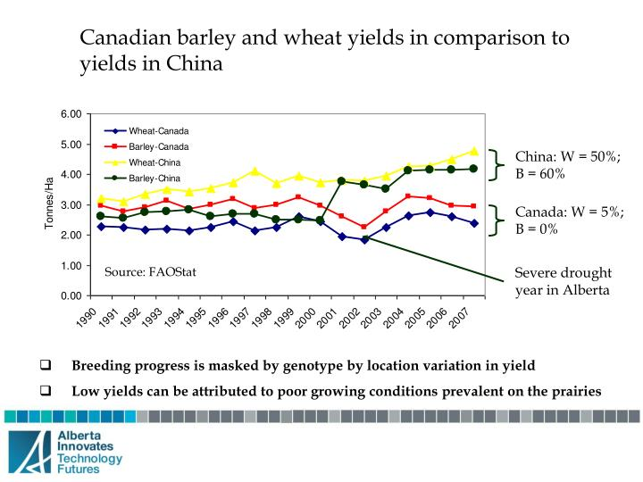 Canadian barley and wheat yields in comparison to yields in China