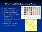 mtt cell proliferation assay