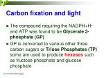 carbon fixation and light18