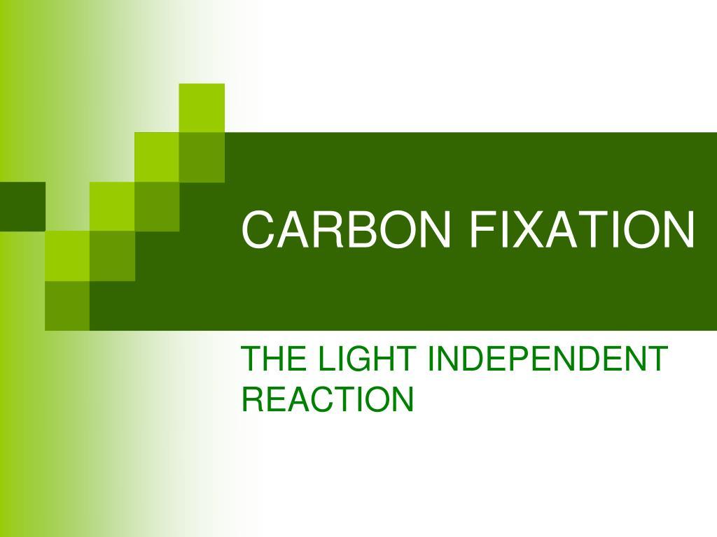 carbon fixation l.