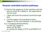 enzyme controlled reaction pathways4