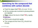 searching for the compound that combines with carbon dioxide