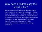 why does friedman say the world is flat4