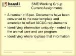 sme working group current assignments