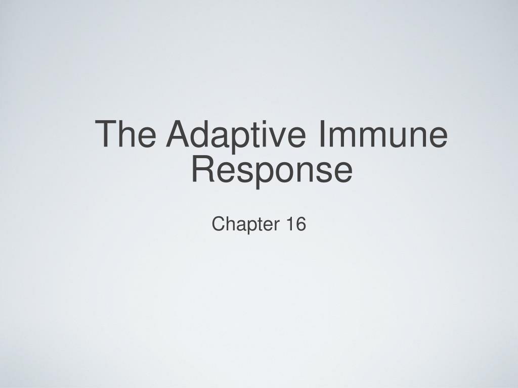the adaptive immune response l.