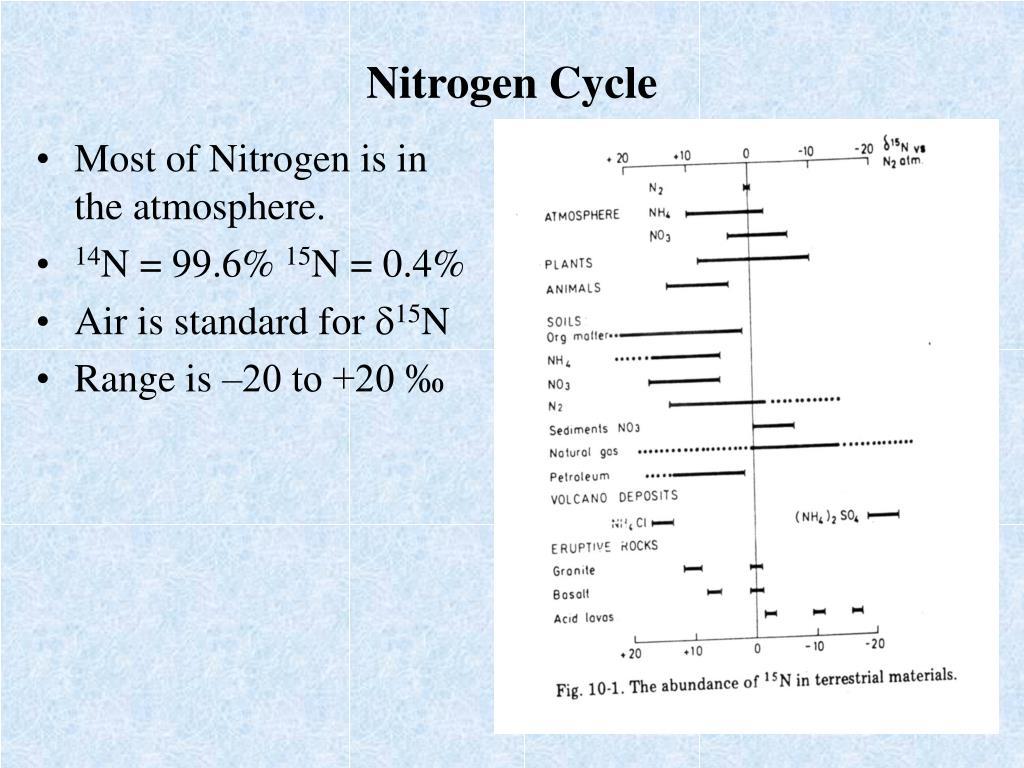 nitrogen cycle l.