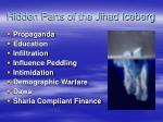 hidden parts of the jihad iceberg
