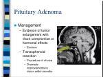 pituitary adenoma93