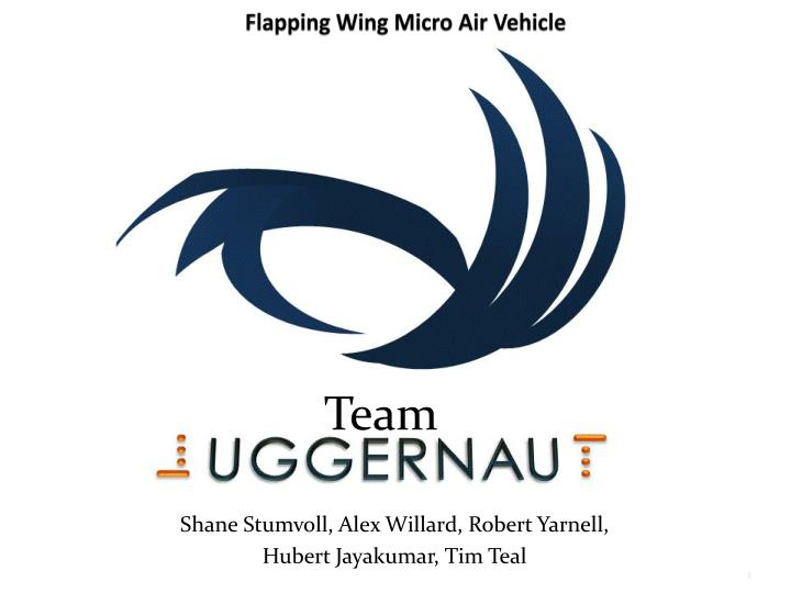 flapping wing micro air vehicle n.