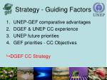 strategy guiding factors