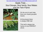 gods tree soul groups soul family soul mates and the twin flame