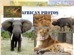 african photos