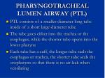 pharyngotracheal lumen airway ptl