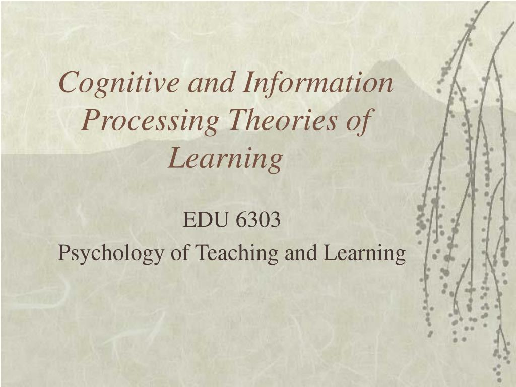 cognitive and information processing theories of learning l.
