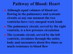 pathway of blood heart40
