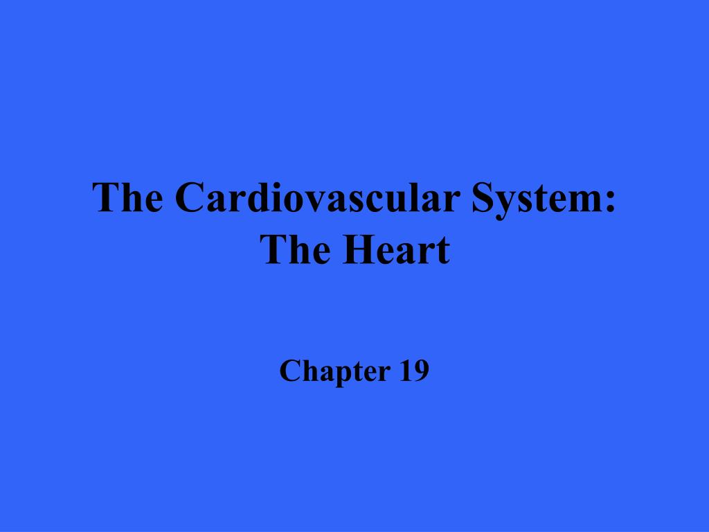 the cardiovascular system the heart l.
