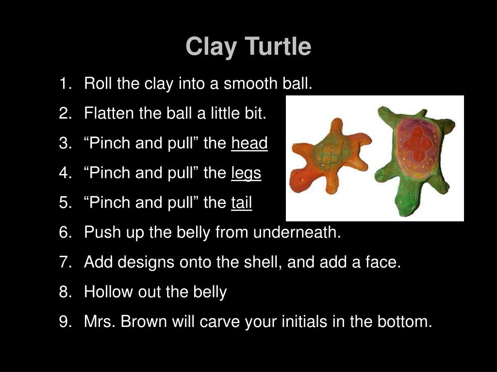 clay turtle l.
