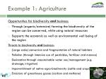 example 1 agriculture17