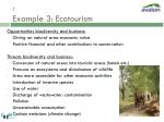 example 3 ecotourism21
