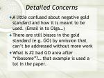detailed concerns41