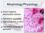 morphology physiology
